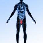 Наиболее эффективные современные методы лечения варикоцеле